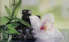 Стеклодекор Релакс 2 25*40 Орхидея