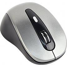 Беспроводная мышка Gembird MUSW-6B-01-BG серая, dpi:1600, USB, 2xAAА (MUSW-6B-01-BG), мышь для ноутбука, фото 2