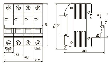 Выключатель автоматический ВА47-29 4Р 50А 4.5кA C IEK, фото 2