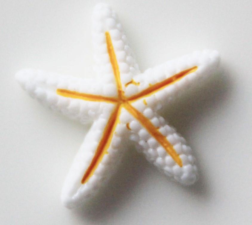 """Шармик """"Морська зірка"""" 1шт"""