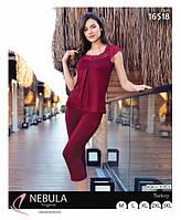 Летний костюм с бриджами бордового цвета  до 54 размера
