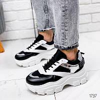 Кроссовки женские Inny белый + черный + серебро на шнурках 36