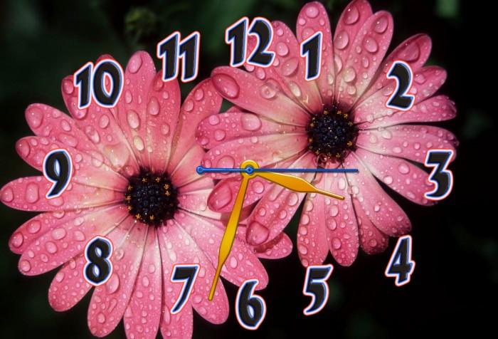 Часы настенные 30х45см Z 187