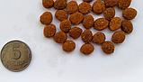 Baskerville. HF klein Rassen. SMALL BREED Сухой корм для взрослых собак мелких пород 7,5 кг, фото 2