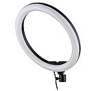 Светодиодная кольцевая лампа Ring Fill Light ZD666 (26см), фото 2