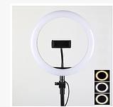 Светодиодная кольцевая лампа Ring Fill Light ZD666 (26см), фото 4