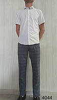 Чоловічі штани Prodigy. (cotton 65%,viscon 32%,elastan 3%). Розміри: 29,30,31,32,33,34,36,