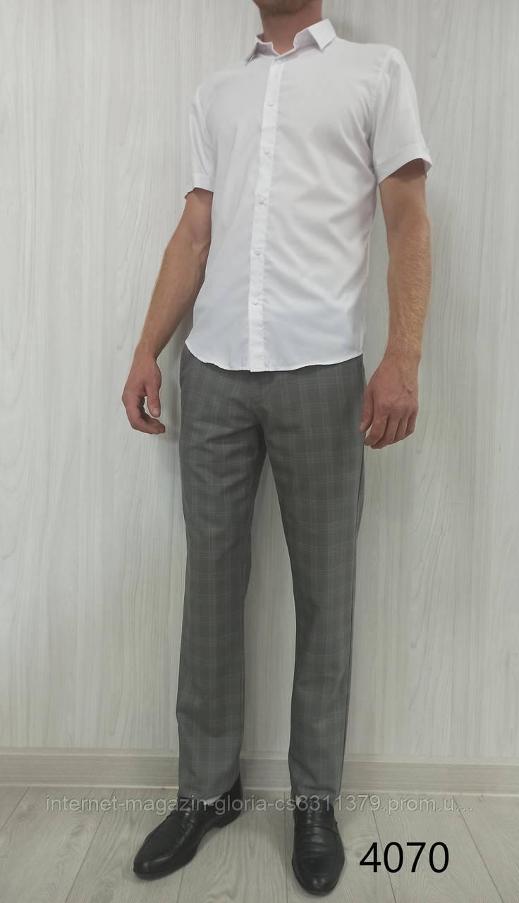 Мужские брюки Prodigy. (cotton 65%,viscon 32%,elastan 3%). Размеры: 34,36/2,38/2,40,42.