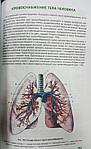 Анатомия человека. 200 цветных рисунков по всем системам и органам человека, фото 6