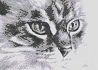 Алмазна вишивка АВ 4045 (повна зашивання)