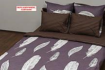 Набор постельного белья из сатина - Перо коричневое, компания