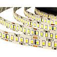 """Светодиодная LED лента гибкая 12V PROlum™ IP20 3014240 Series """"S"""", фото 3"""
