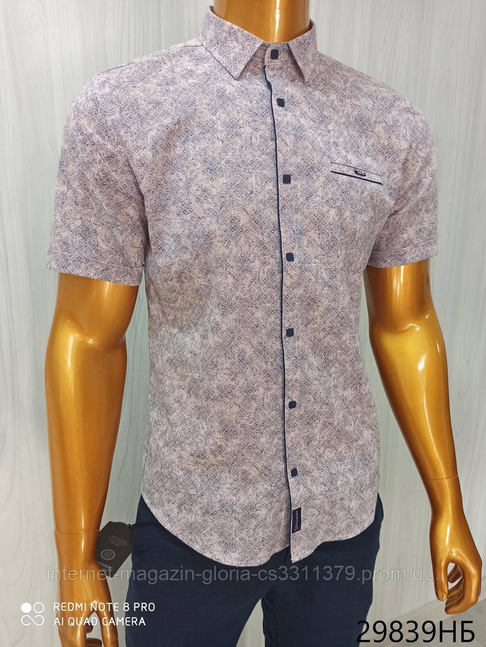 Мужская рубашка Батал Amato. AG.KG 29839-v06. Размеры: 2XL,3L,4XL,5XL.