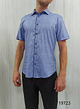Мужская рубашка Amato. AG.KG19638(g). Размеры: M,L,XL,XXL., фото 7