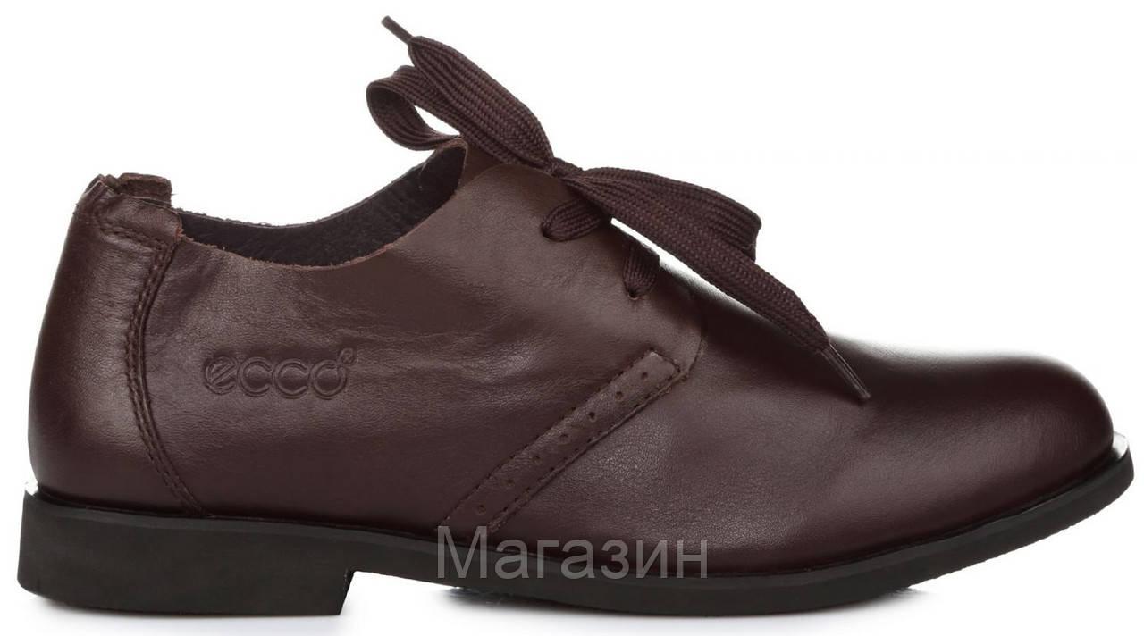 Мужские кожаные туфли ECCO Derby Brown (Экко) коричневые
