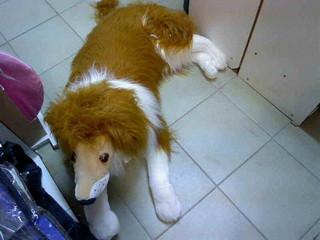 М'яка іграшка Собака Коллі 45*100*50см pro..