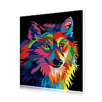 Картина на холсте по номерам Lesko E-951 Радужный Волк Животные 40-50см набор для творчества живопись