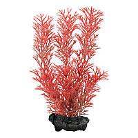 Декорация для аквариума Tetra DecoArt Plantastics растение с утяжелителем «Red Foxtail» (пластик)