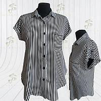 Блуза / сорочка в смужку № 362 19081/1
