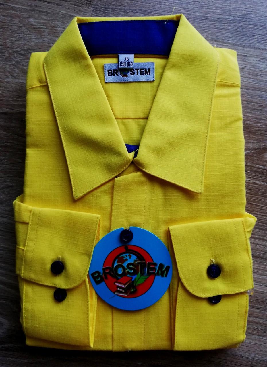 Рубашка с длинным рукавом Жёлтая 158-164