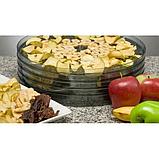 Сушарка електрична для овочів і фруктів Royals, фото 4