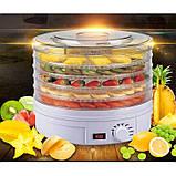 Сушарка електрична для овочів і фруктів Royals, фото 3