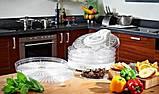 Сушилка электрическая для фруктов и овощей и ягод Royals, фото 5