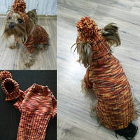 Свитер и шапочка 1386 Одежда для собак мелких пород. pro