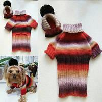 Свитер и шапочка 4252 Одежда для собак мелких пород. pro