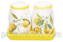 Набор для специй Сочные лимоны: солонка, перечиница на керамической подставке