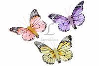 Бабочки декоративные (комплект 6шт.) (5-60740), фото 1