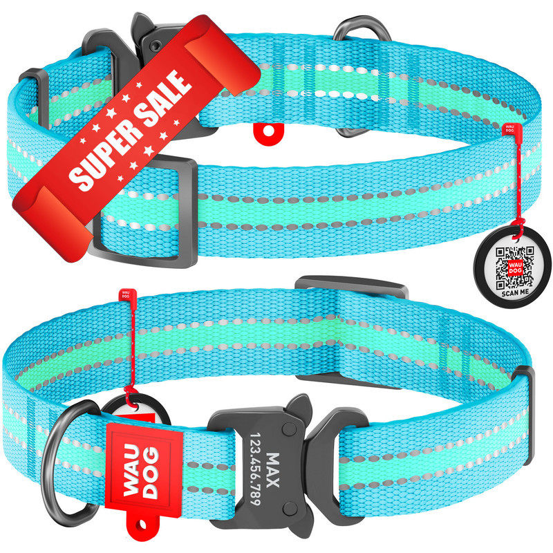 Ошейник для собак нейлоновый WauDog Nylon, светонакопительный с площадкой для гравировки и адресником, голубой, обхват шеи - 23-35 см, ширина - 15 мм
