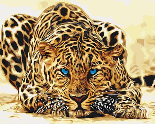 КНО2450 Розфарбування по номерах Дика кішка, Без коробки, фото 2