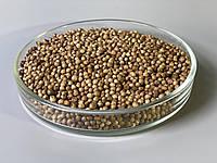 Кориандр семена микрогрин экосемена microgreens seeds  non gmo certified Вес 1 кг, фото 1