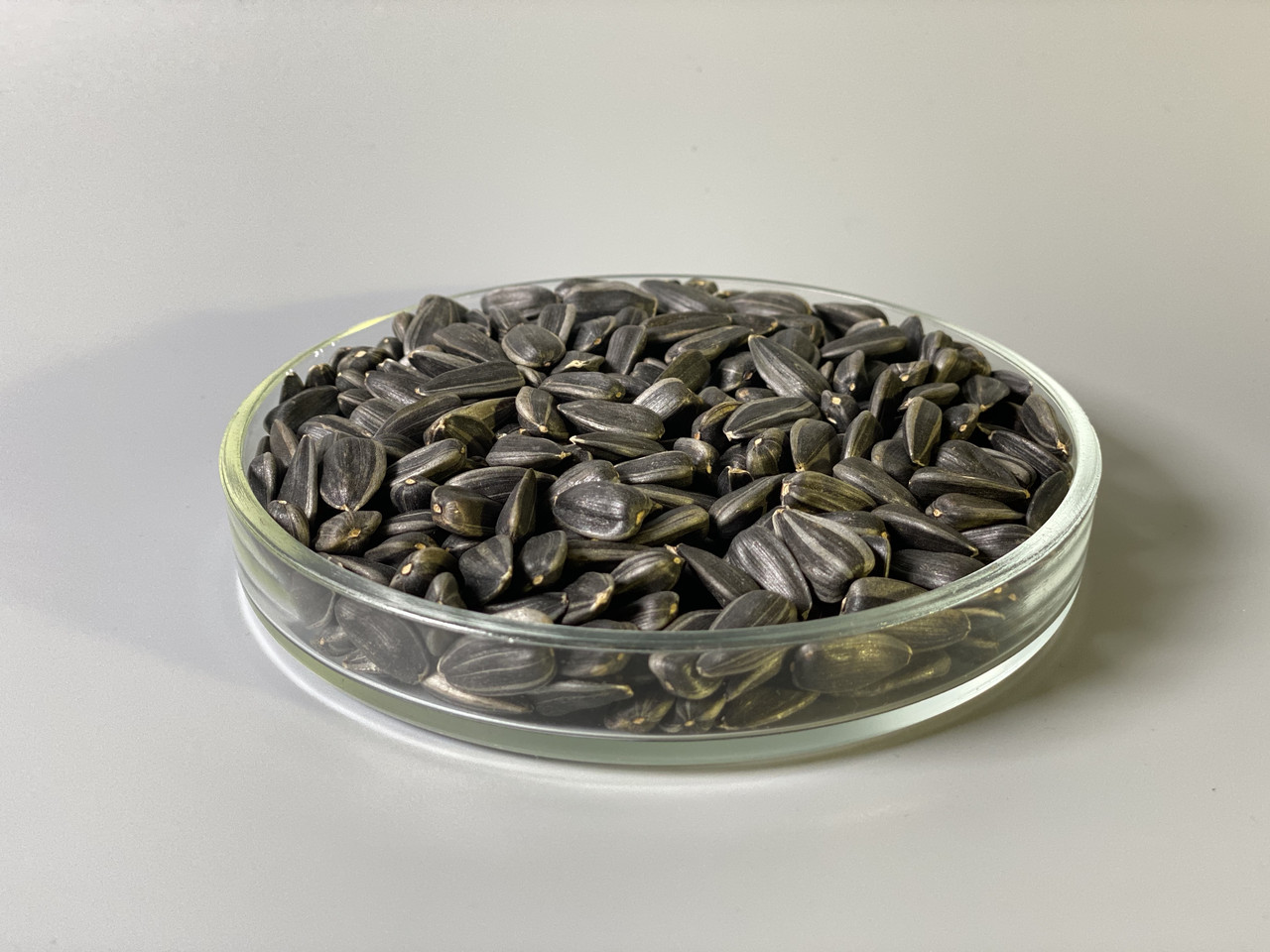 Подсолнечник семена микрогрин экосемена microgreens seeds  non gmo certified Вес 1 кг