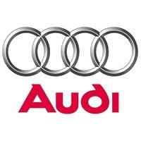 Захисту картера двигуна, кпп, диф-ла Audi (Ауді) Полігон-Авто, Кольчуга
