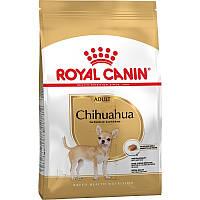 Сухой корм Royal Canin Chihuahua Adult для взрослых собак старше 8 месяцев