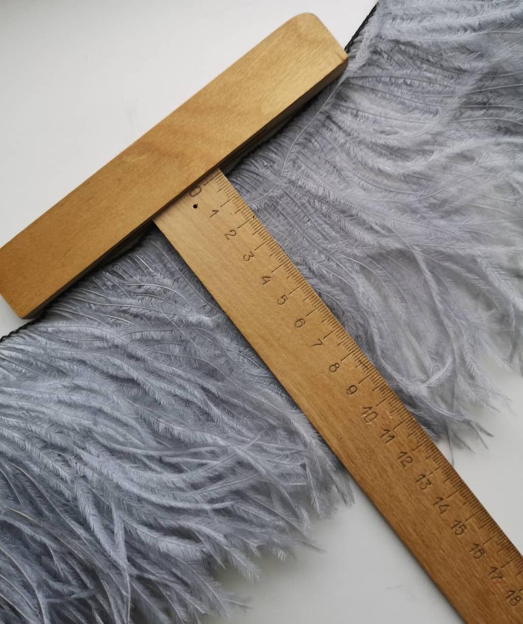 Перья страуса на ленте 10-15 см, перьевая тесьма из натуральных перьев светло серого цвета. Цена за 0,5 м.