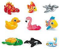 Intex Іграшки 58590 NP (36) надувні, 9 видів