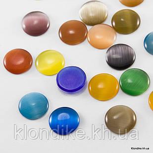 Кабошоны Синтетические Кошачий Глаз, Круглые, 14×3 мм, Цвет: Микс (5 шт.)