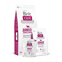 Сухой корм Brit Care (Брит Кеа) JUNIOR LARGE BREED Lamb&Rice. Сухой корм для щенков крупных пород с ягненком и рисом, Выбор: 12 кг