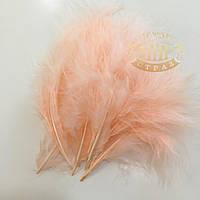 Перо марабу Shell Pink, 10-15см,