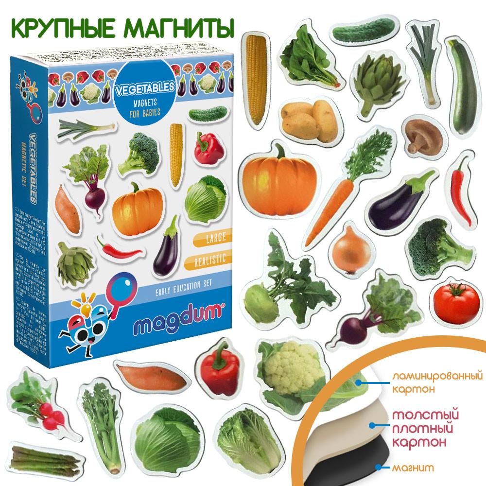 Набор детских магнитов Овощи, Magdum (ML4031-12 EN)