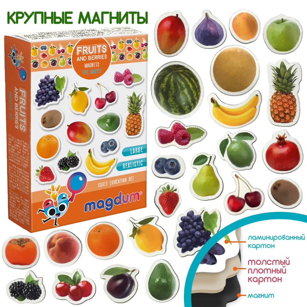 Набор детских магнитов Фрукты ягоды, Magdum (ML4031-11 EN)