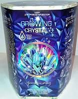 Набор для опытов Выращивание кристаллов (рус/укр), Danko Toys (GRK 01-05U)