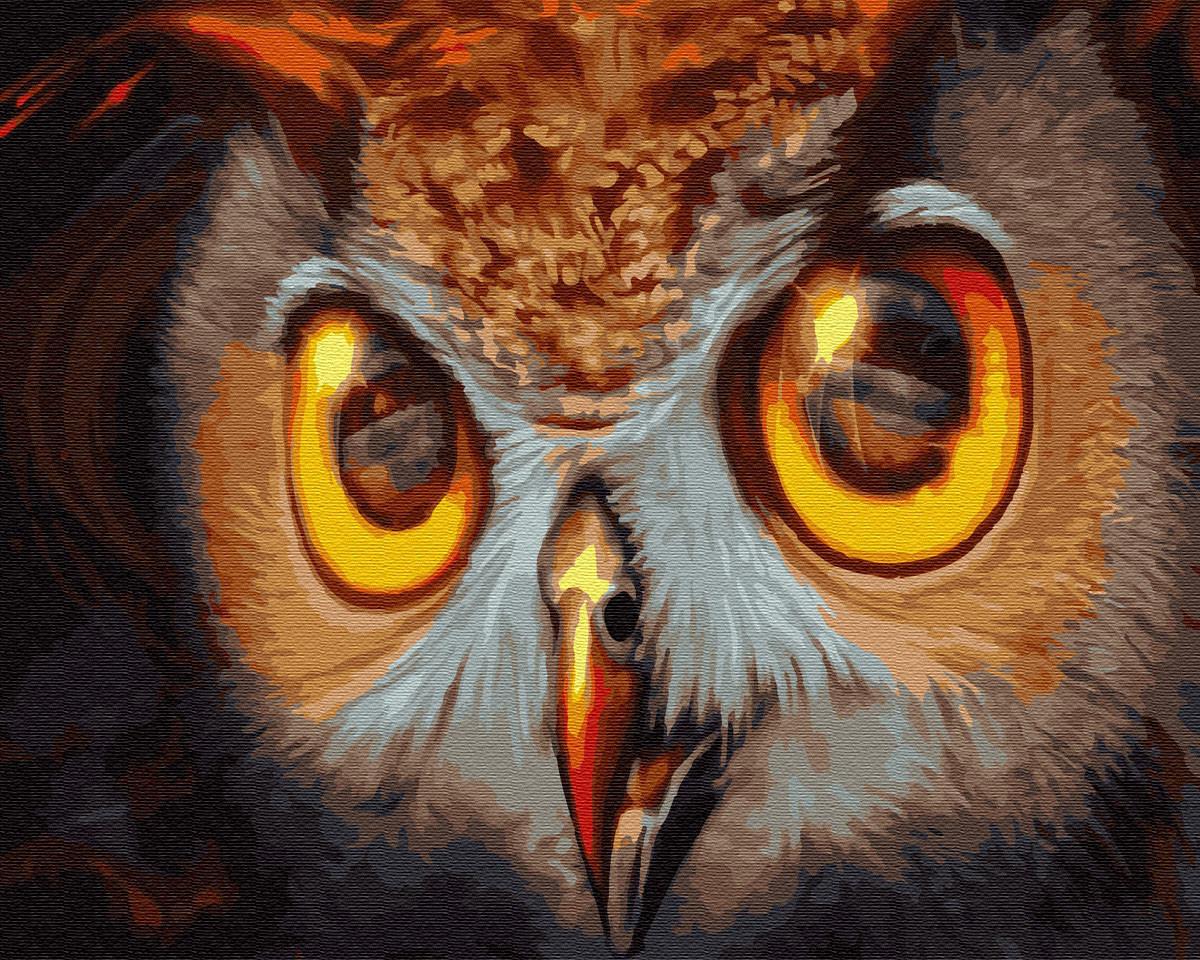 Картина по номерам птицы Сова (40 х 50 см), BrushMe (GX30086)