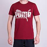 Чоловіча футболка Puma, червоного кольору, фото 7