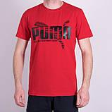 Чоловіча футболка Puma, кольору бордо, фото 6