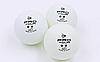 Набор мячей для настольного тенниса 3 штуки DUNLOP MT-679158 2star PRO TOUR (пластик, d-40мм, белый), фото 3