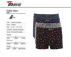 Подростковые стрейчевые шорты на мальчика Марка «INDENA» арт.95519, фото 3